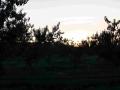 Scampia2014-004