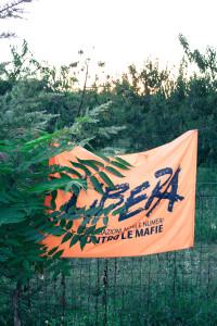 """Associazione """"Libera"""""""