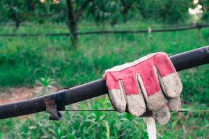 Lavoro per i campi